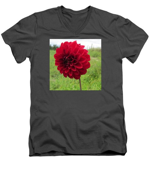 Red, Red, Red Men's V-Neck T-Shirt by Jeanette Oberholtzer