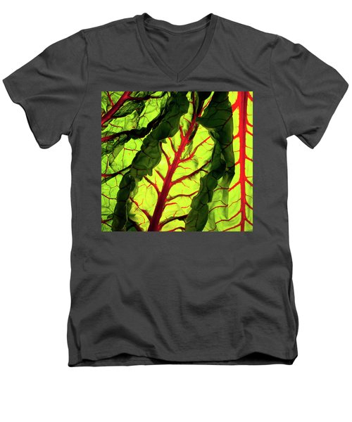 Men's V-Neck T-Shirt featuring the photograph Red River by Bobby Villapando
