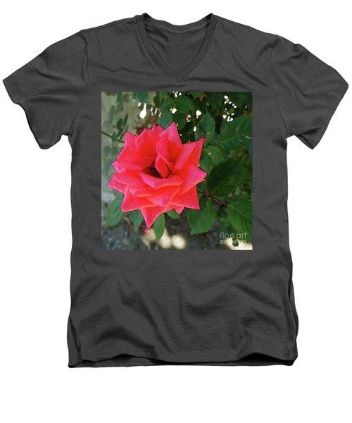 Pink Rose  Men's V-Neck T-Shirt by Don Pedro De Gracia