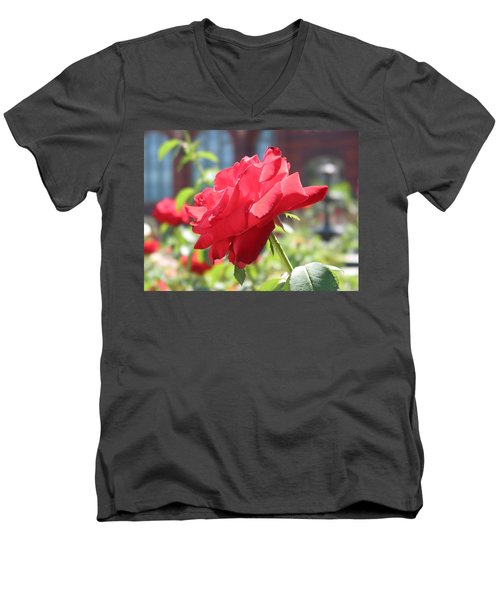 Red Rose Men's V-Neck T-Shirt by Brian McDunn