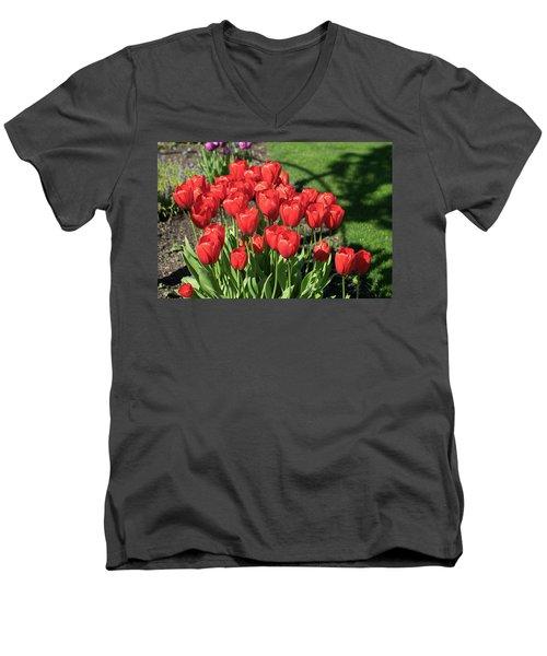 Red Royalty Men's V-Neck T-Shirt