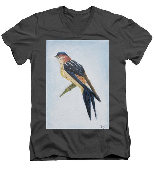 Red-rumped Swallow Men's V-Neck T-Shirt