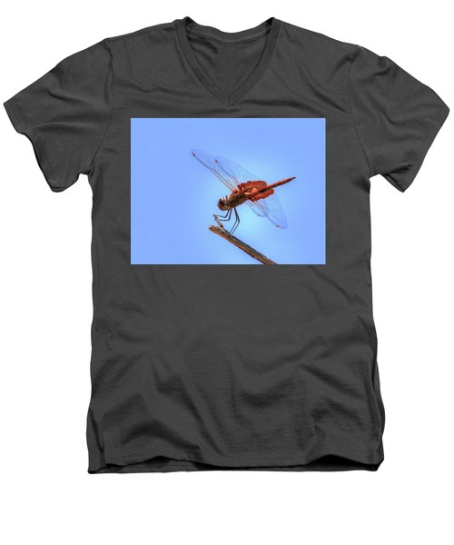 Red Saddlebag Dragonfly Men's V-Neck T-Shirt