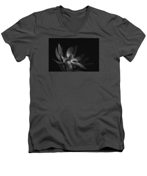 Red Safari Sunset Proteaflora #5 Men's V-Neck T-Shirt by Catherine Lau