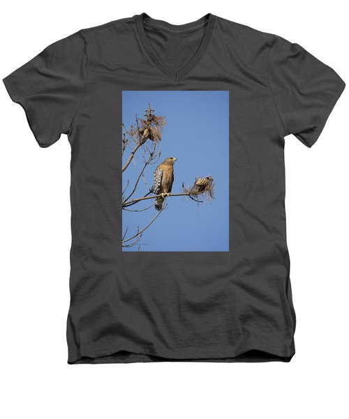 Red Shoulder Hawk Men's V-Neck T-Shirt