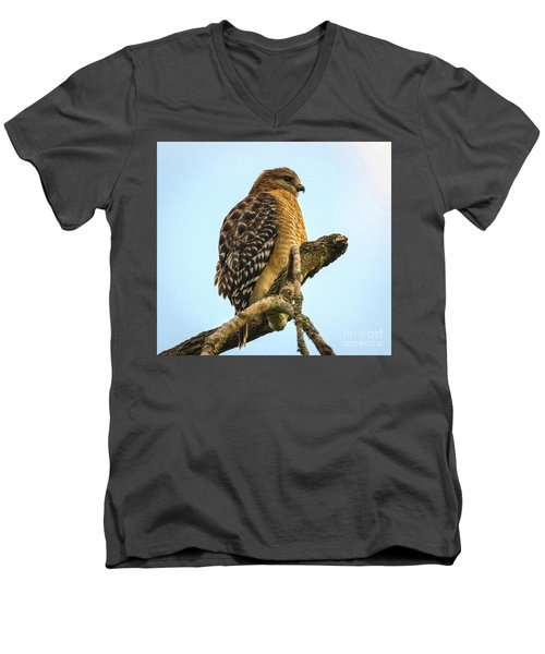 Red-shouldered Hawk - Buteo Lineatus Men's V-Neck T-Shirt