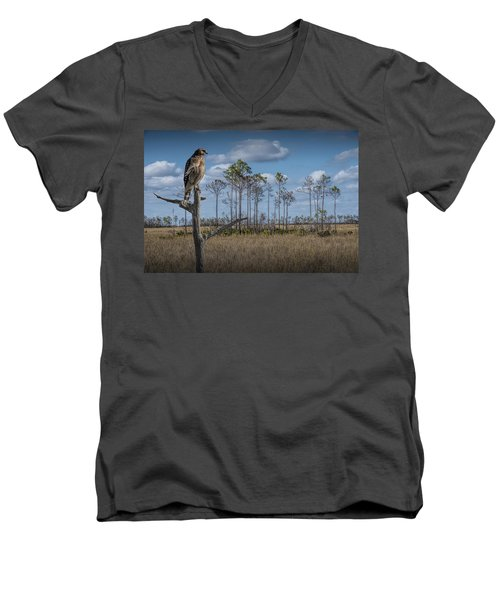 Red Shouldered Hawk In The Florida Everglades Men's V-Neck T-Shirt