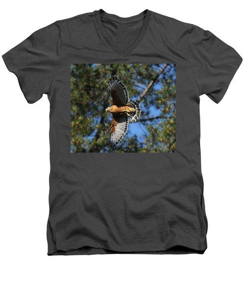 Red Shouldered Hawk Men's V-Neck T-Shirt