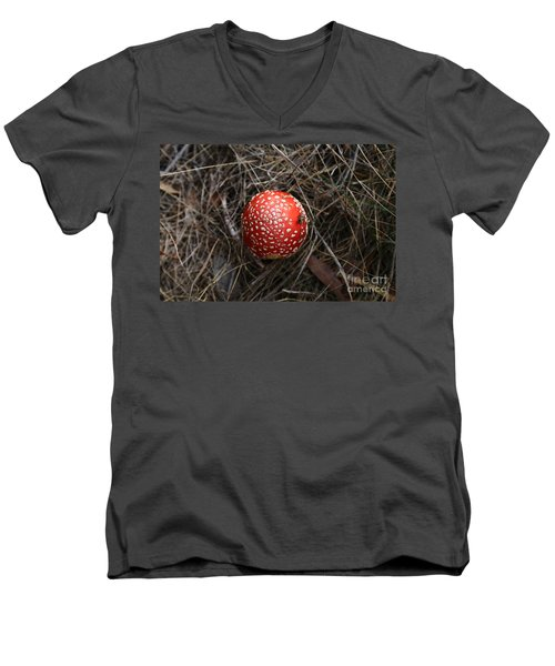 Red Spotty Toadstool Men's V-Neck T-Shirt