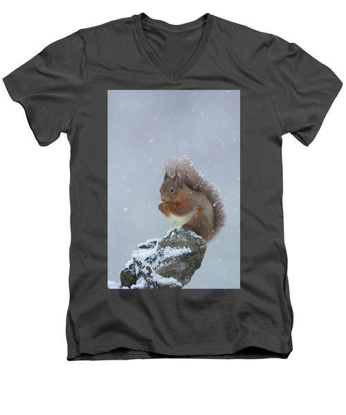 Red Squirrel In A Blizzard Men's V-Neck T-Shirt