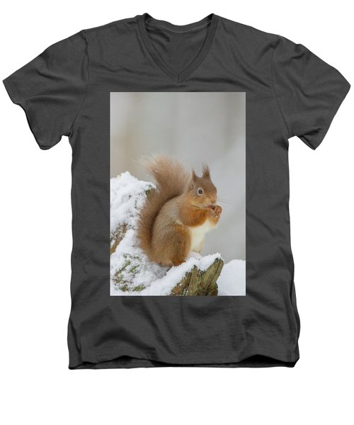 Red Squirrel In The Snow Side On Men's V-Neck T-Shirt