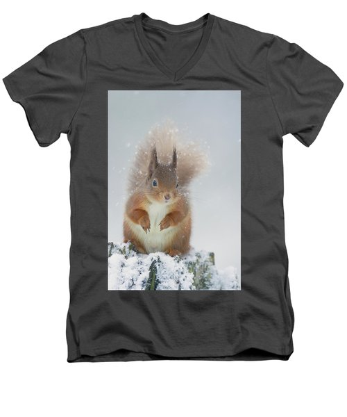 Red Squirrel In Winter Men's V-Neck T-Shirt