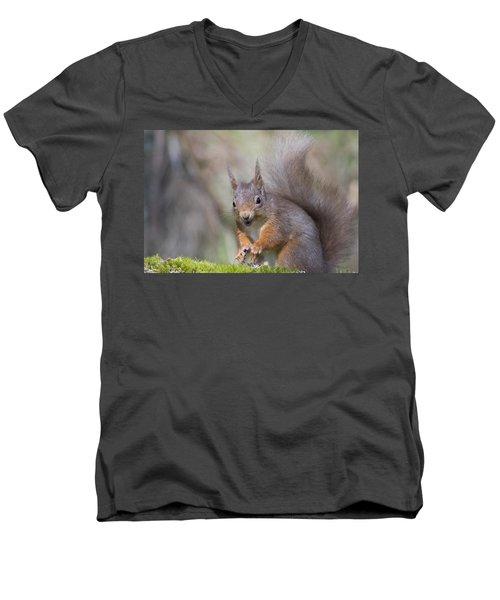 Red Squirrel - Scottish Highlands #26 Men's V-Neck T-Shirt