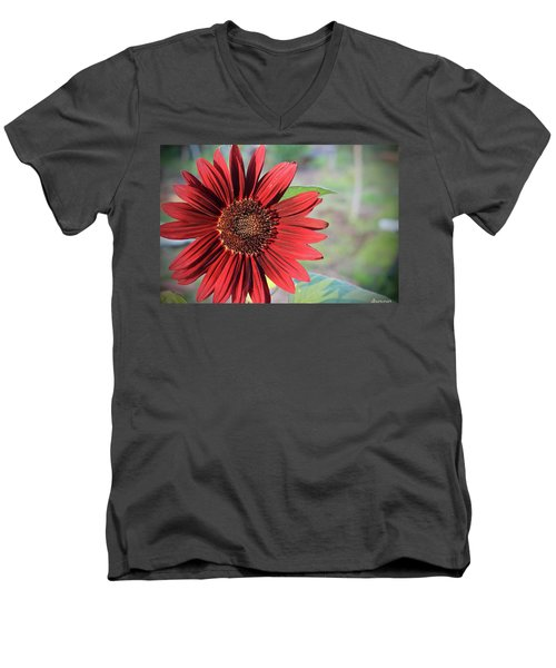 Red Sunflower Men's V-Neck T-Shirt