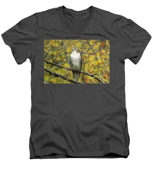 Red Tail Hawk 9887 Men's V-Neck T-Shirt by Michael Peychich
