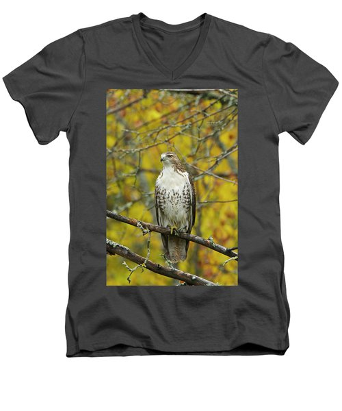 Red Tail Hawk 9888 Men's V-Neck T-Shirt by Michael Peychich