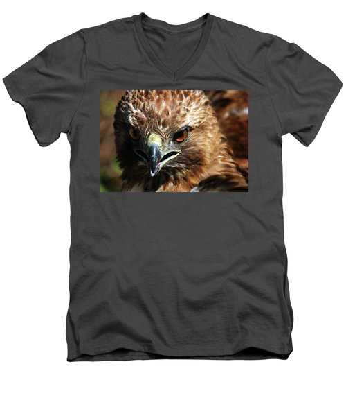 Men's V-Neck T-Shirt featuring the photograph Red-tail Hawk Portrait by Anthony Jones