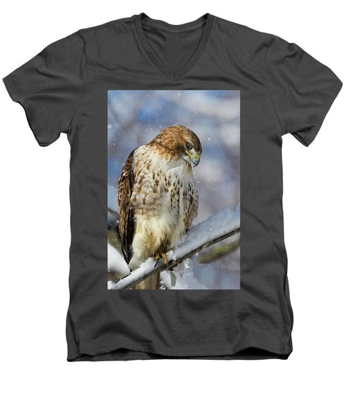 Red Tailed Hawk, Glamour Pose Men's V-Neck T-Shirt