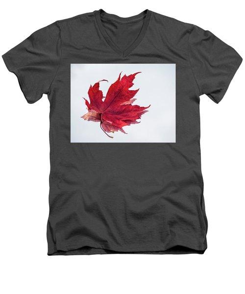 Red Threads Men's V-Neck T-Shirt