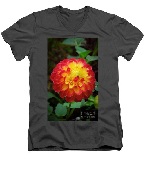 Red Tipped Petals Men's V-Neck T-Shirt