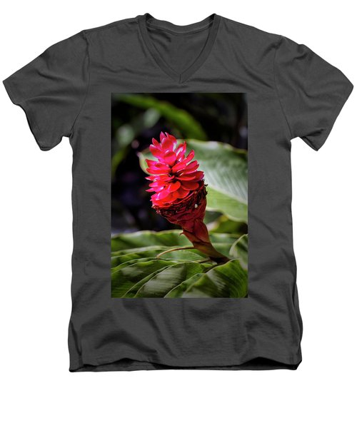 Red Torch Men's V-Neck T-Shirt