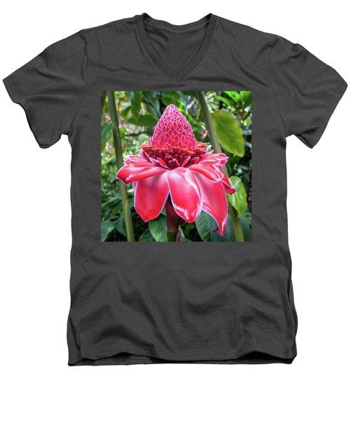 Red Torch Ginger Flower Men's V-Neck T-Shirt