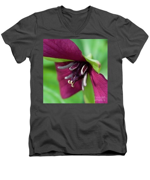 Red Trillium.. Men's V-Neck T-Shirt