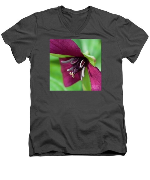 Red Trillium.. Men's V-Neck T-Shirt