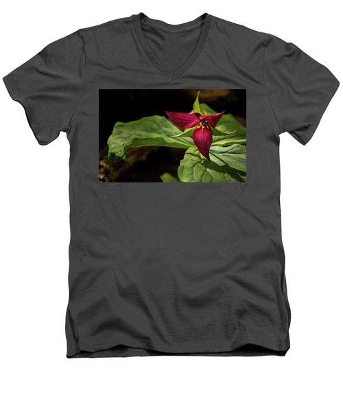 Red Trillium Men's V-Neck T-Shirt