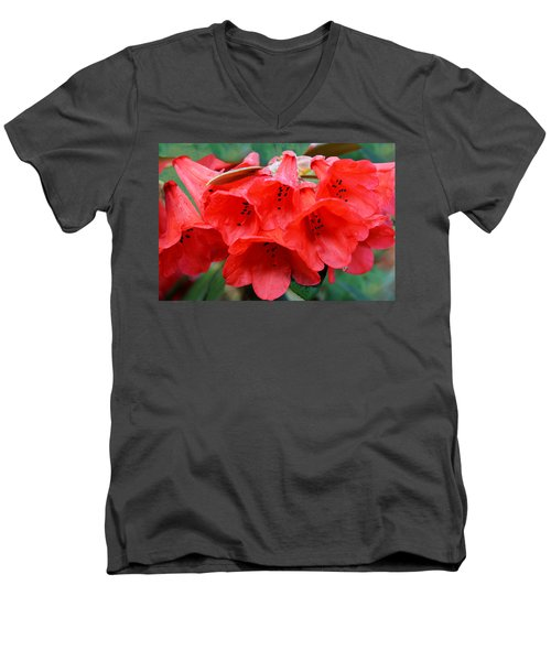 Red Trumpet Rhodies Men's V-Neck T-Shirt