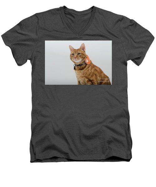 Red Tubby Cat Tabasco Pet Men's V-Neck T-Shirt