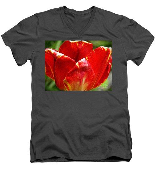 Red Tulip Men's V-Neck T-Shirt by Sarah Loft