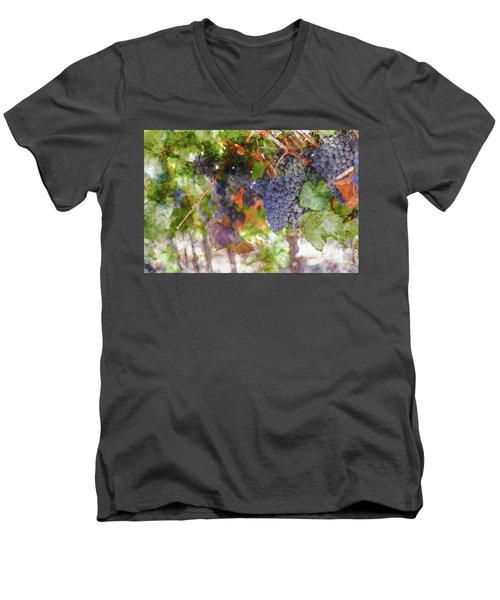 Red Wine Grapes On The Vine In Wine Country Men's V-Neck T-Shirt