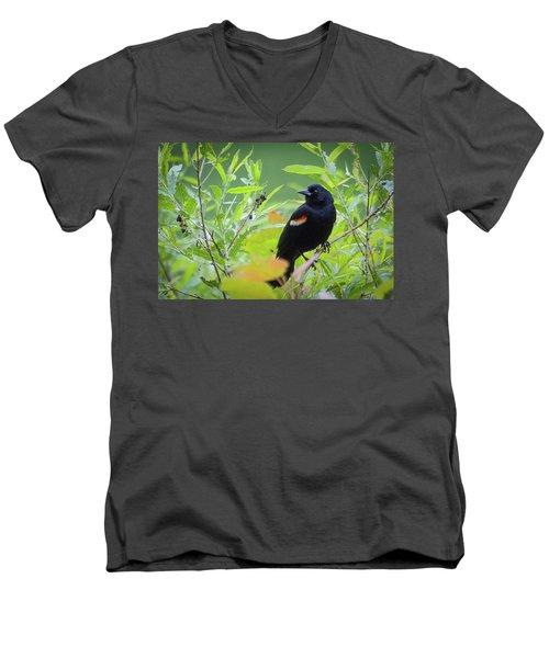 Red Wing In The Marsh Men's V-Neck T-Shirt