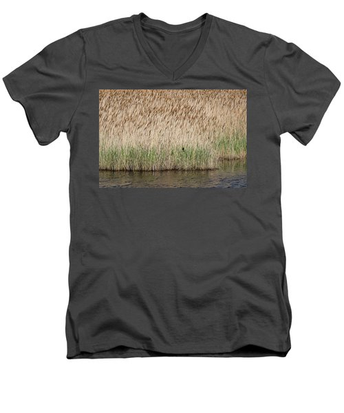 Red-winged Blackbird Men's V-Neck T-Shirt