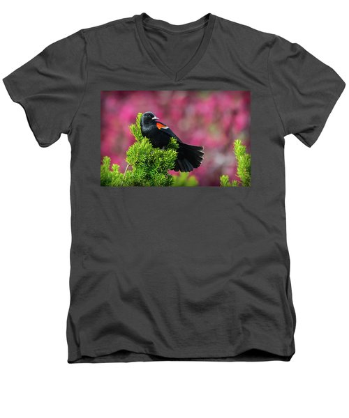 Red Winged Blackbird With Crabapple Blossoms Men's V-Neck T-Shirt