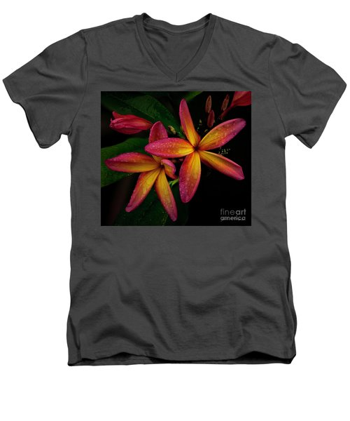 Red/yellow Plumeria In Bloom Men's V-Neck T-Shirt