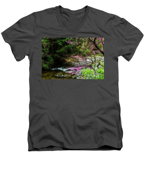 Redbud And River Men's V-Neck T-Shirt