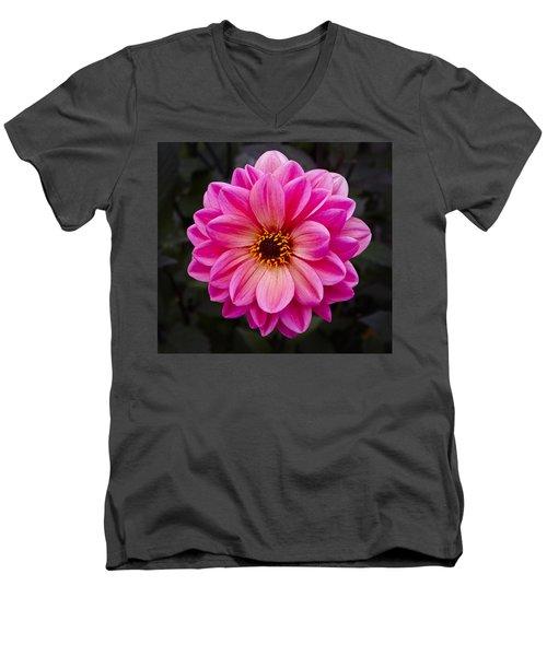 Reddish Dahlia Men's V-Neck T-Shirt