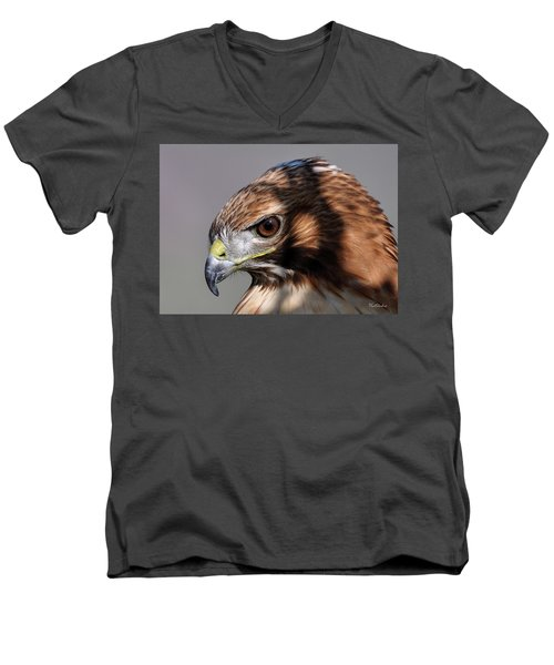 Redtail Hawk Men's V-Neck T-Shirt