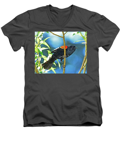 Redwing Blackbird Men's V-Neck T-Shirt by Jack Moskovita