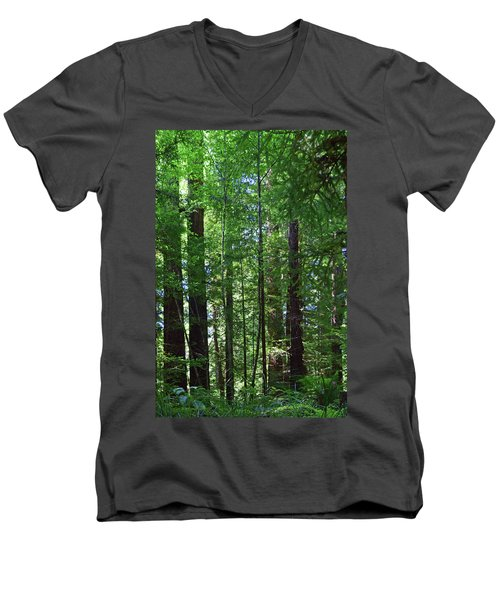 Redwoods No. 3-1 Men's V-Neck T-Shirt