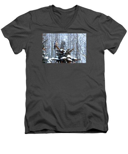 Refined Little Gray Jay In Colorado Men's V-Neck T-Shirt by Carol M Highsmith