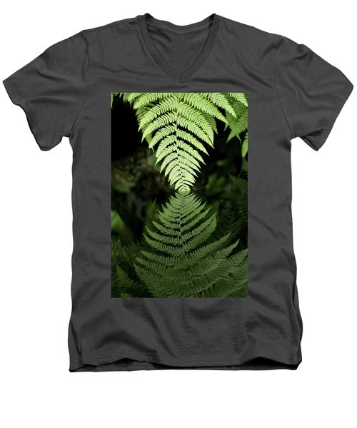 Reflected Ferns Men's V-Neck T-Shirt