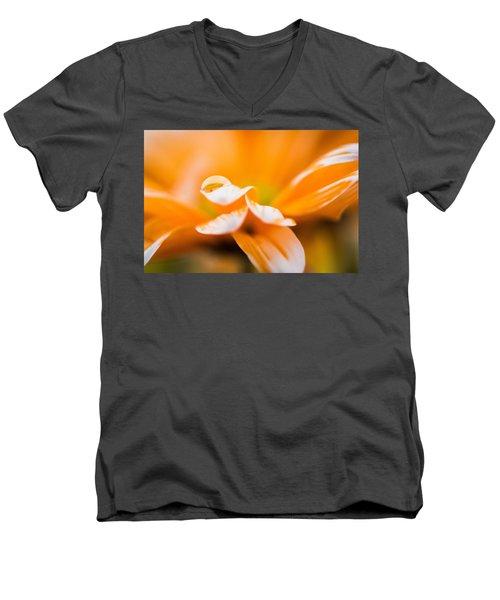 Reflection Of Yourself Men's V-Neck T-Shirt
