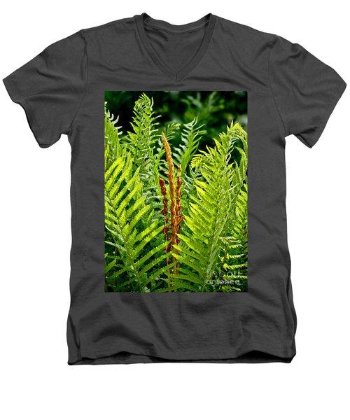 Refreshing Fern In The Woodland Garden Men's V-Neck T-Shirt