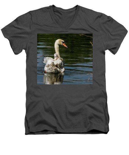 Regal Cygnet Men's V-Neck T-Shirt