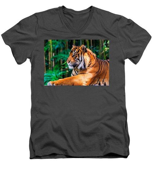 Regal Tiger Men's V-Neck T-Shirt