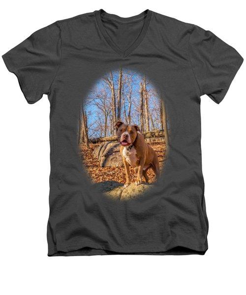 Remy 6 For Shirts Men's V-Neck T-Shirt