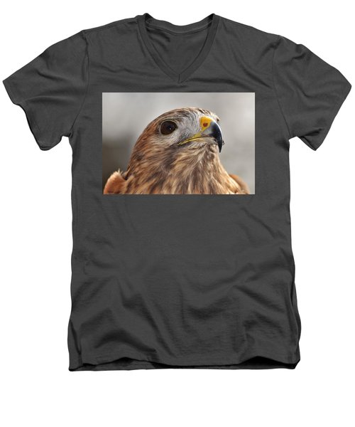 Rescued Hawk Men's V-Neck T-Shirt